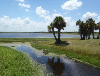 Loughman Lake, Titusville, Florida